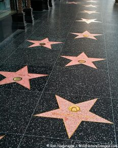 15 surprising truths about Hollywood Walk of Fame! Know its history and high points!