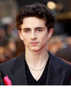 Timothée Hal Chalamet- an American actor from Call Me by Your Name and Lady Bird has a immense filmy background!