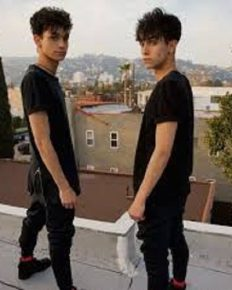 The award-winning Dobre Brothers! Know the latest developments in the career of YouTube stars, Dobre Brothers!