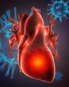 Heart: How does coronavirus infection affect the cardiac tissue of patients and dead cases?